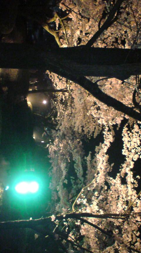 金沢へ行って来ました